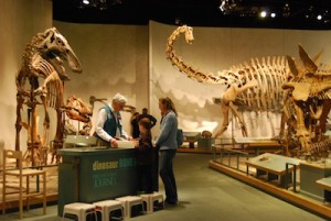 prehistoric journey at the denver museum of nature and science