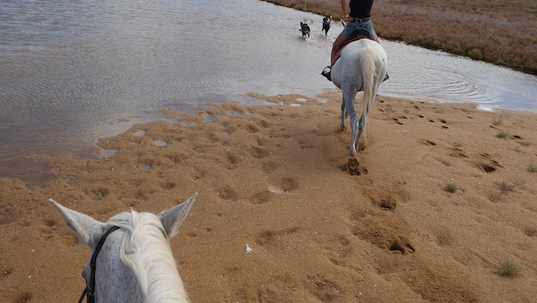 horseback riding to the lagoon